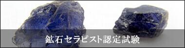 鉱石資格の鉱石セラピスト