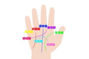 手相における指の形や長さの意味